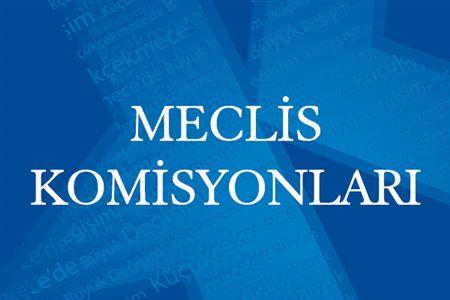 MECLİS KOMİSYONLARI