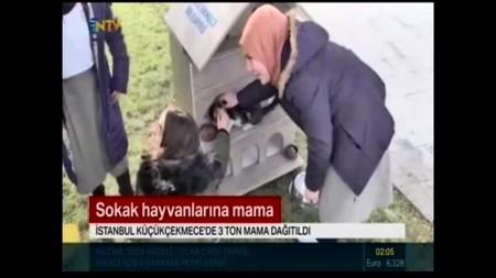 Sokak Hayvanlarına Mama-NTV